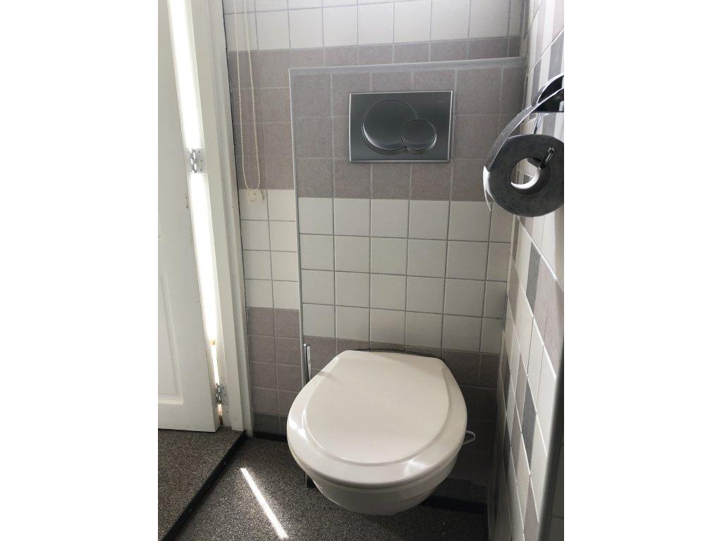 toilet bg